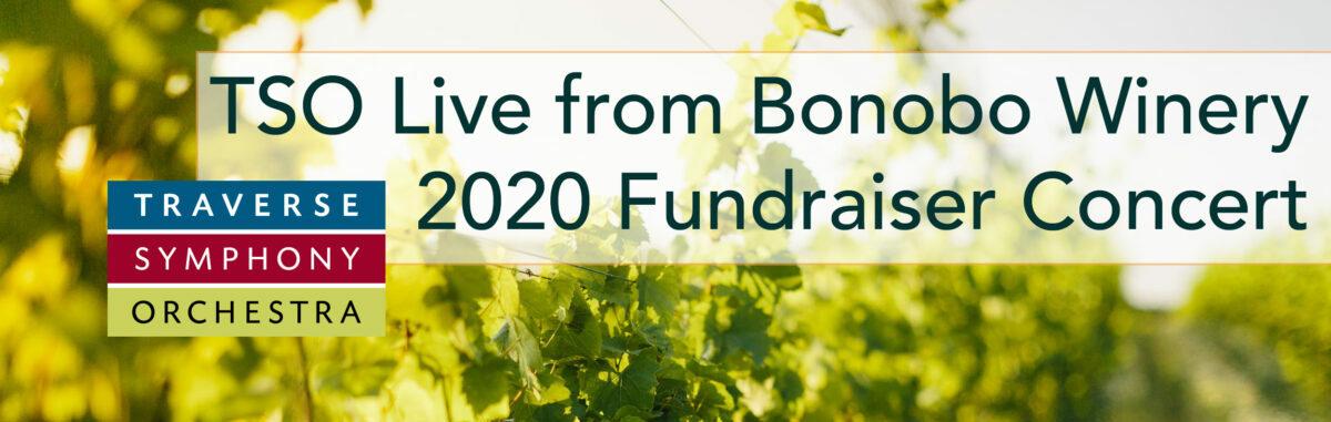 Bonobo Fundraiser slide